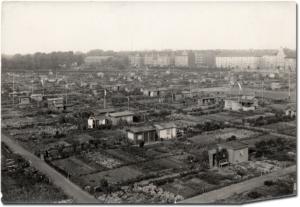 Blick auf die Hafenwiese, ca. 1961.